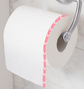 Toilet Paper Roll Direction